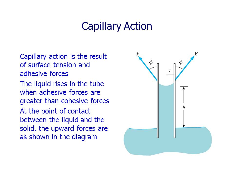 Capillary Action Capillary action is the result of surface tension and adhesive forces.