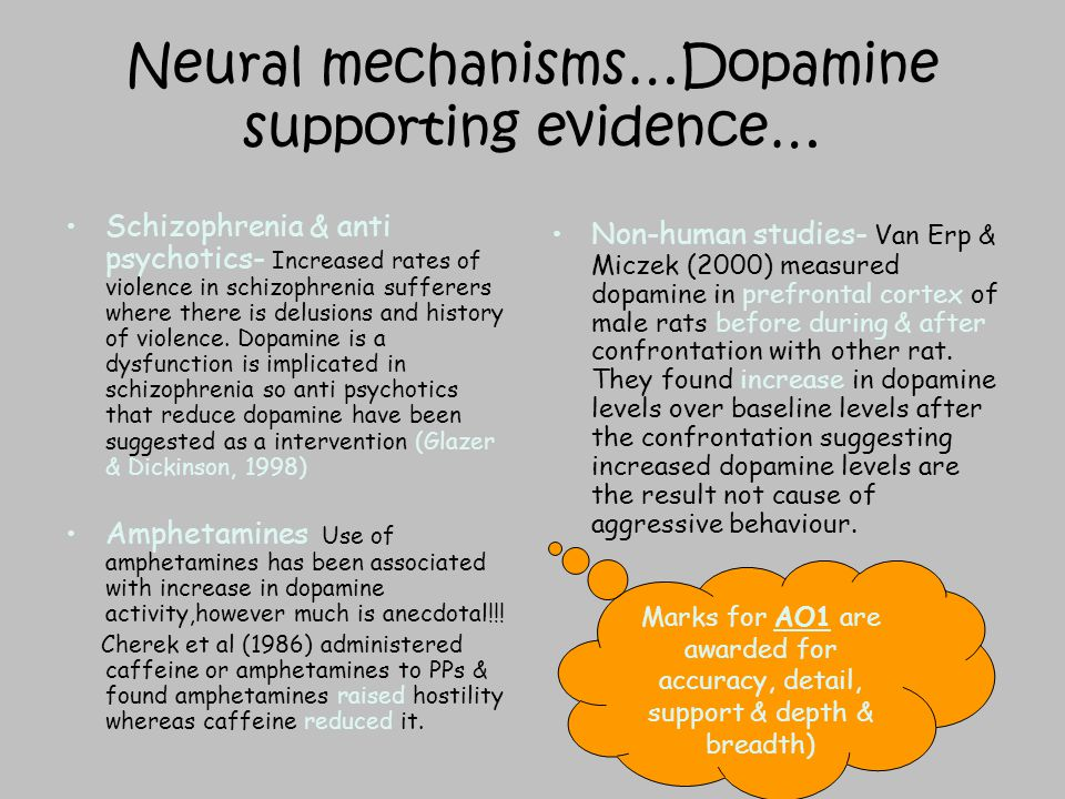 neural and hormonal mechanisms in aggression Neural/genetic/hormonal mechanisms in aggression exam tips too neural mechanisms the two neurotransmitters that are believed to be most associated with.