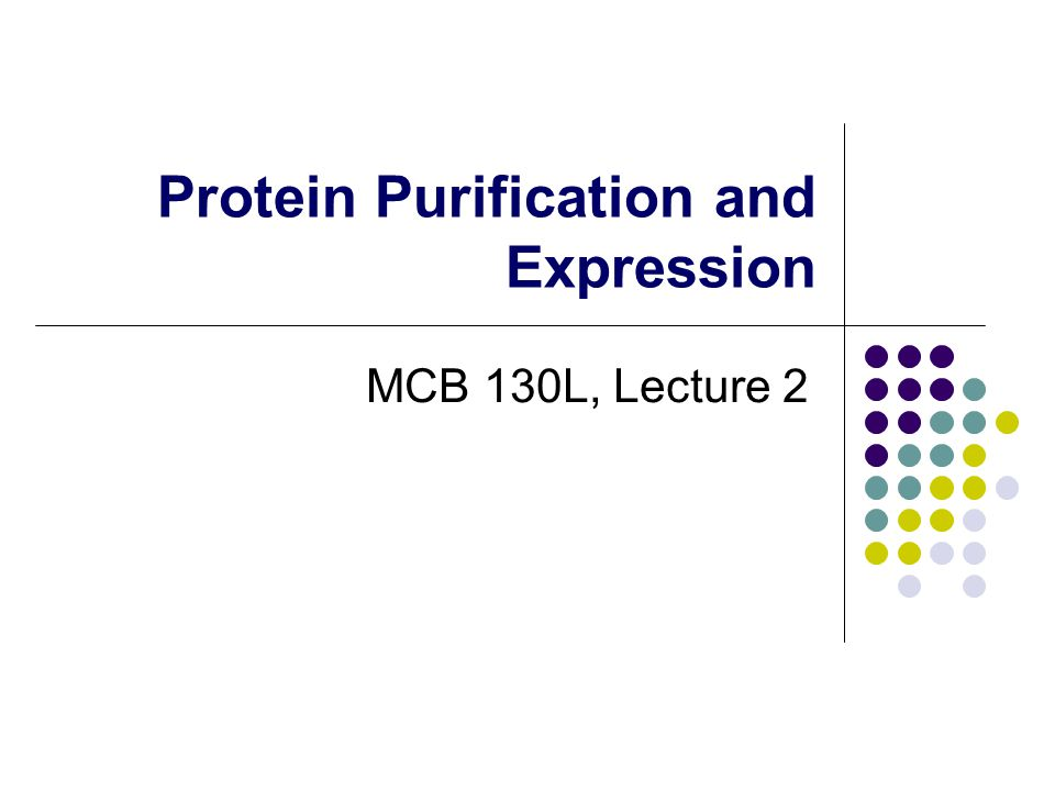 protein purification essay Read purification of green fluorescent protein free essay and over 88,000 other research documents purification of green fluorescent protein title: purification of green fluorescent.