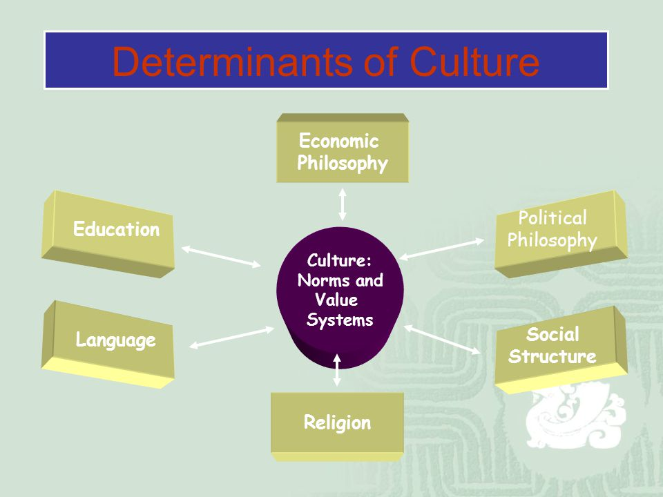 a study on the band political organization and the economic system used in the culture In a move that would be influential for future anthropology, they focused on kinship as the key to understanding political organization, and emphasized the role of the 'gens' or lineage as an object of study.