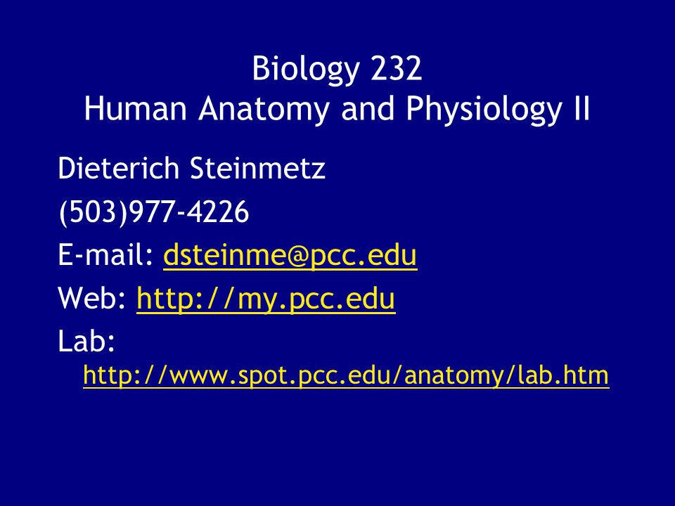 Exelent Pcc Anatomy And Physiology Festooning - Anatomy And ...