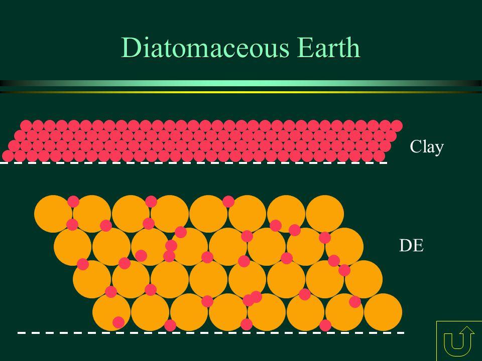 Diatomaceous Earth Clay DE