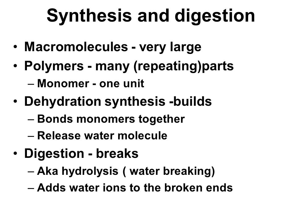 Synthesis and digestion