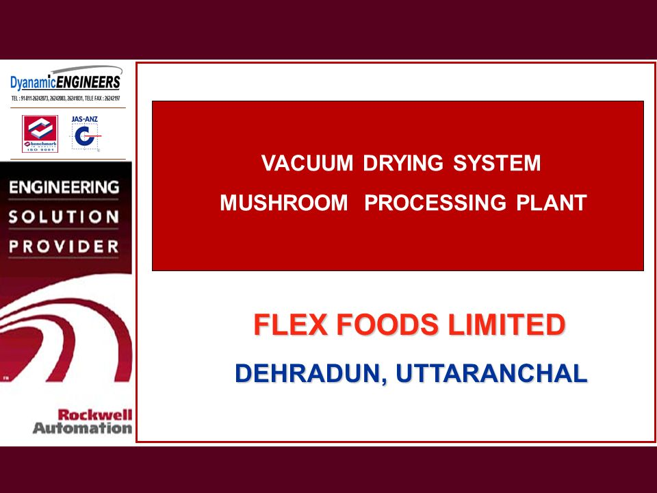 FLEX FOODS LIMITED DEHRADUN, UTTARANCHAL VACUUM DRYING SYSTEM