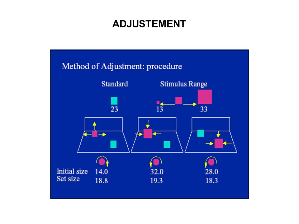 ADJUSTEMENT