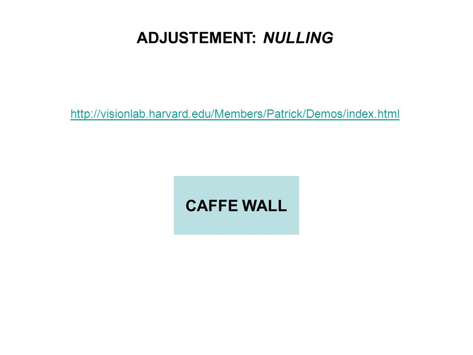ADJUSTEMENT: NULLING CAFFE WALL