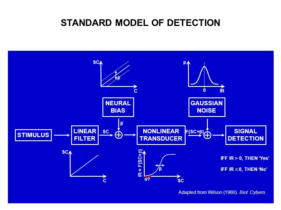 STANDARD MODEL OF DETECTION