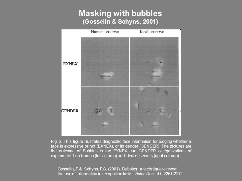 Masking with bubbles (Gosselin & Schyns, 2001)