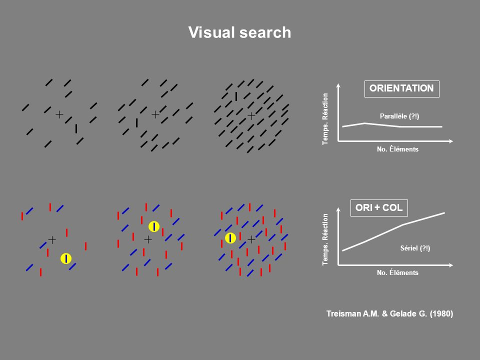 Visual search ORIENTATION ORI + COL Treisman A.M. & Gelade G. (1980)