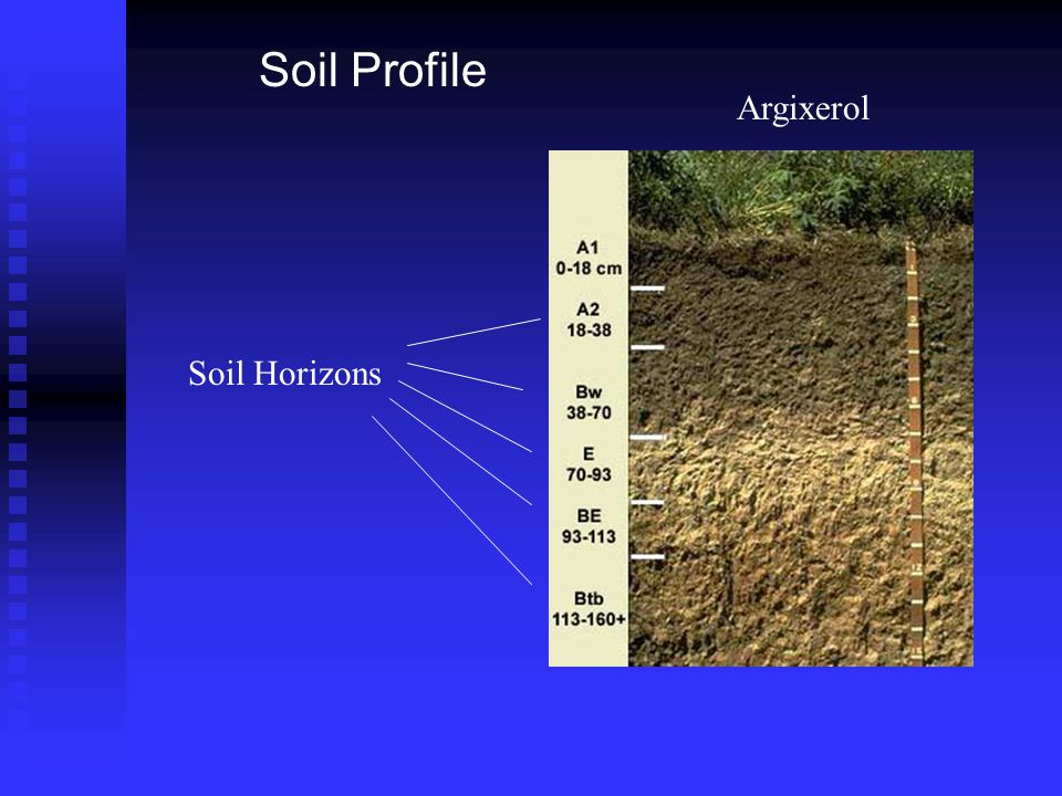 Ges 175 science of soils laboratory week ppt video online for Mineral soil vs organic soil