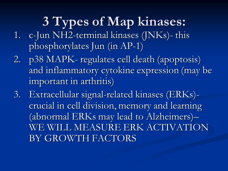 Map Kinase (Map = mitogen-activated protein kinases) what ...