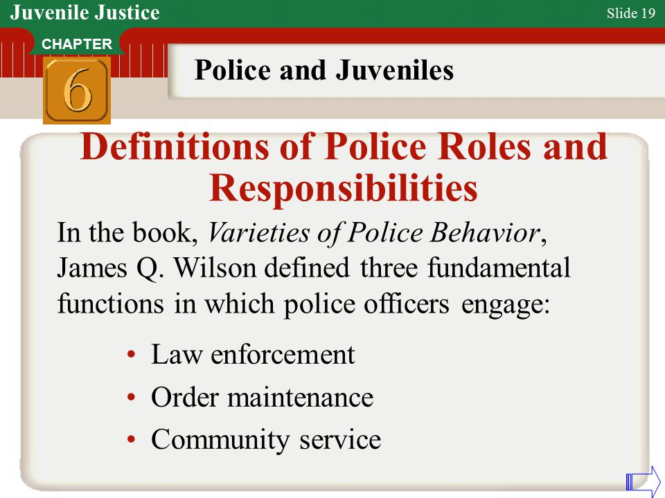 definitions of police roles and responsibilities