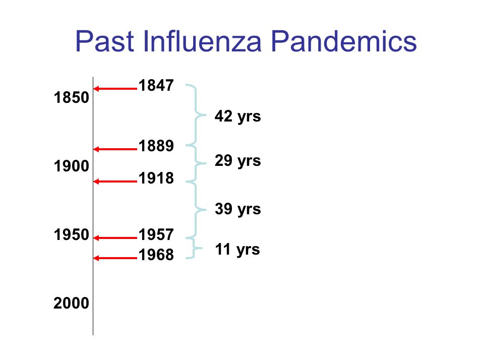 Past Influenza Pandemics