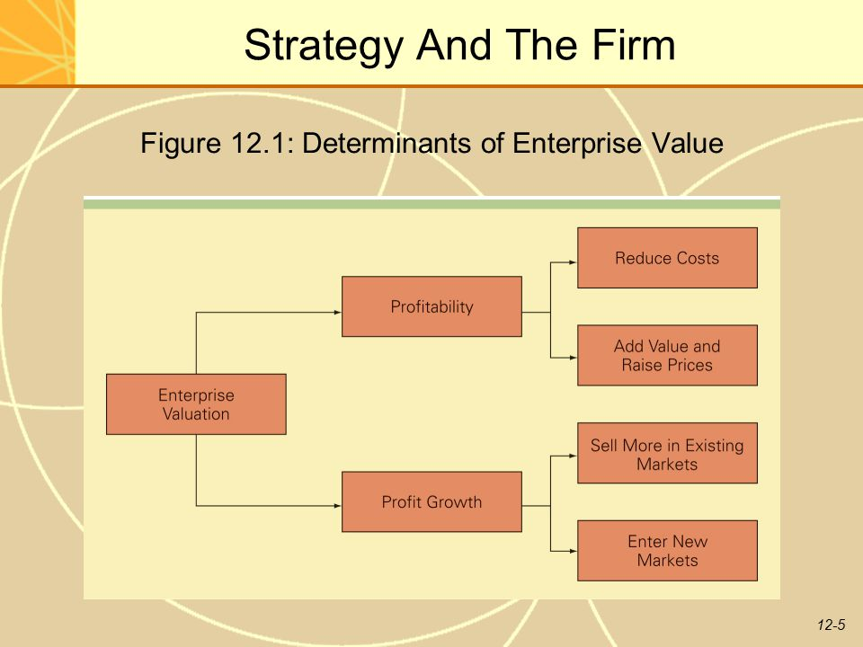 Figure 12.1: Determinants of Enterprise Value