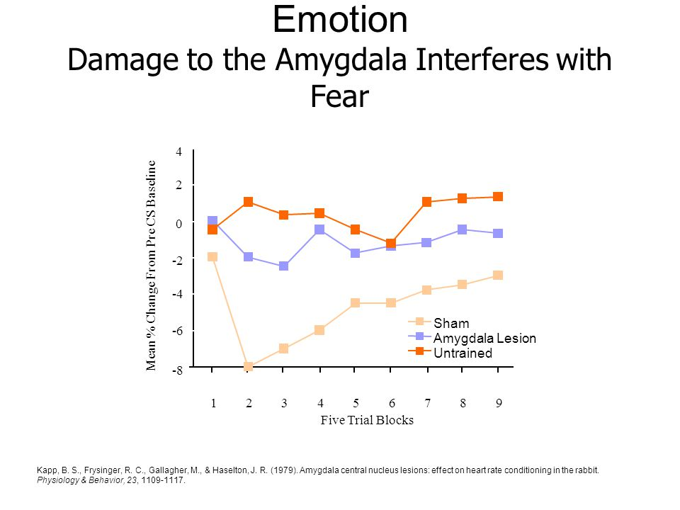 effect of fear on heart rate Research found a heart timing effect (named 'ccfib'), in which participants rated  fear faces as more intense when the heart had just made a beat, compared to.