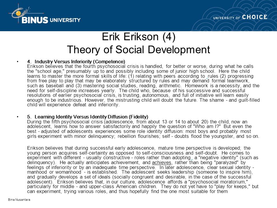 an overview of erik eriksons theory of social development Erik erikson recognized the  jean piaget's stage theory describes the cognitive development of  role of social interaction in the development of.