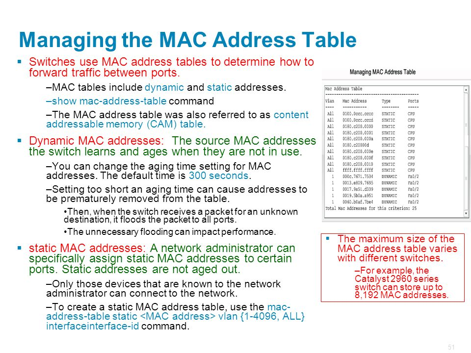 how to download an address book using mac