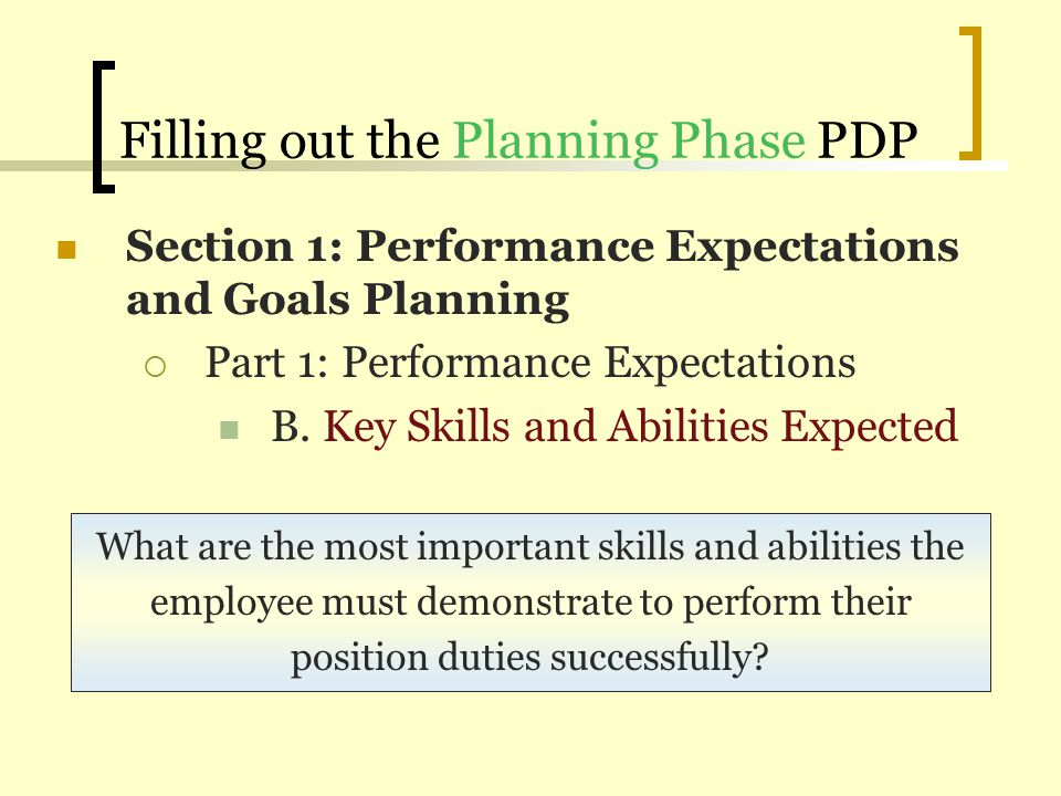 performance development plan