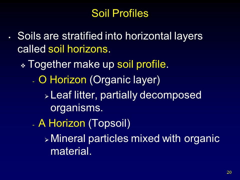 Food and agriculture ppt video online download for What makes up soil