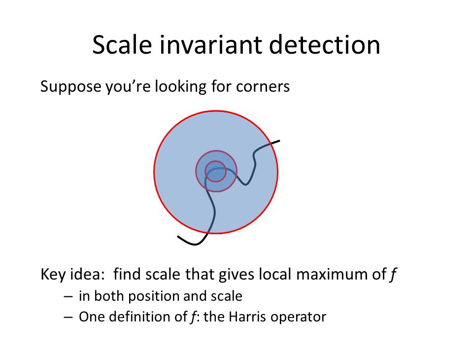 Scale invariant detection