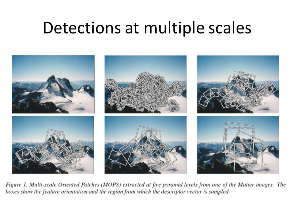 Detections at multiple scales