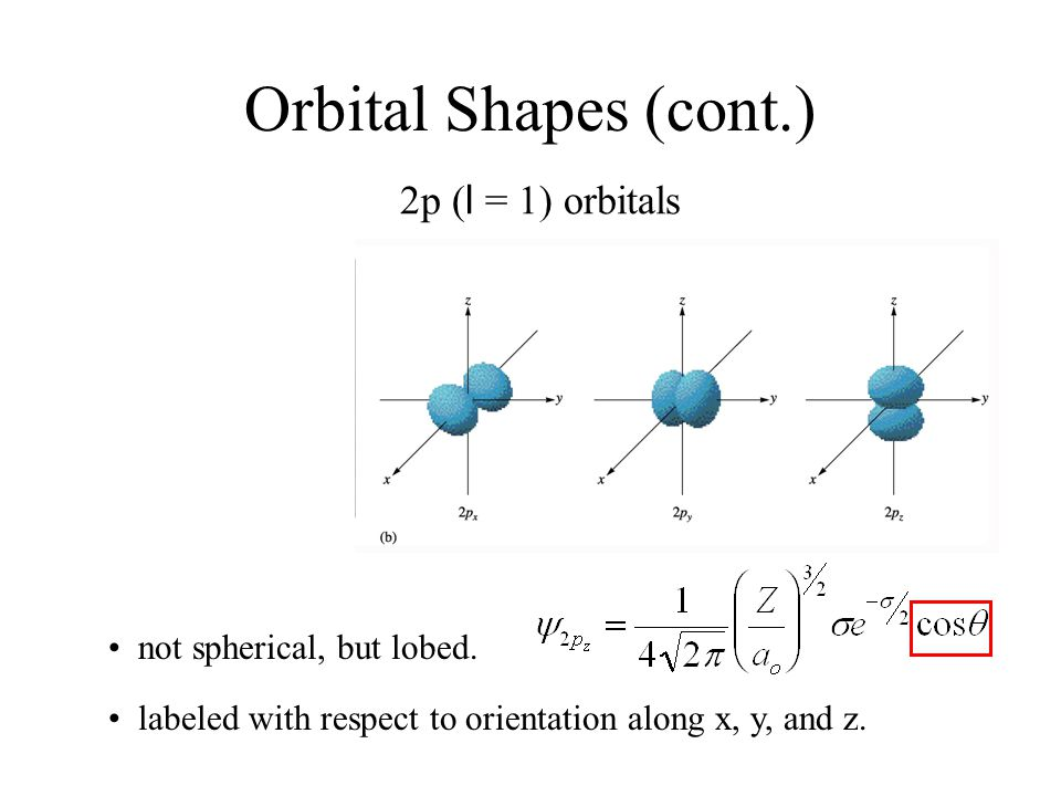 Orbital Shapes (cont.) 2p (l = 1) orbitals • not spherical, but lobed.
