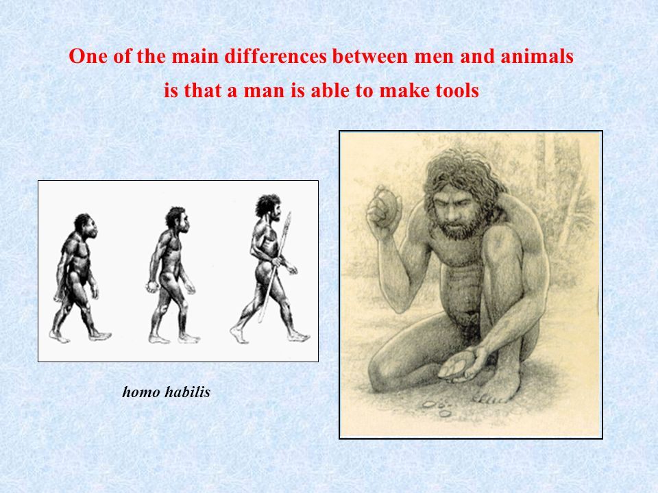 One of the main differences between men and animals