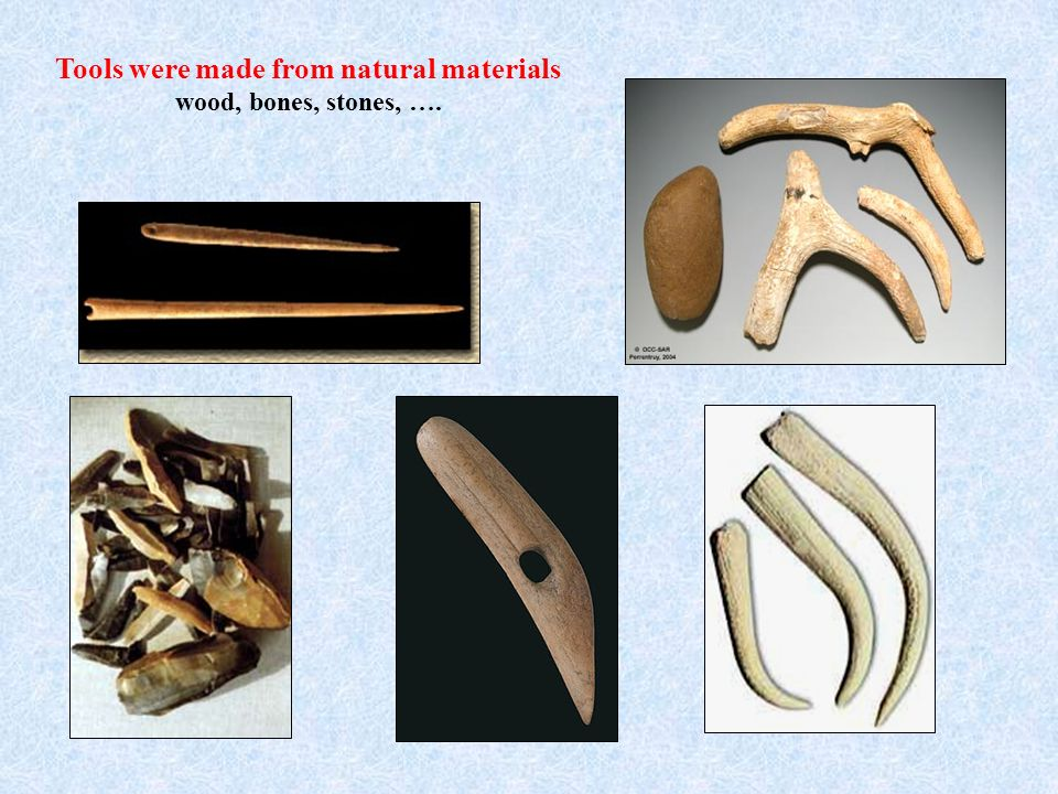 Tools were made from natural materials