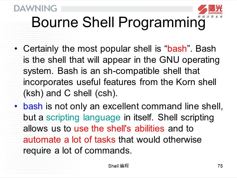Shell Ppt Download