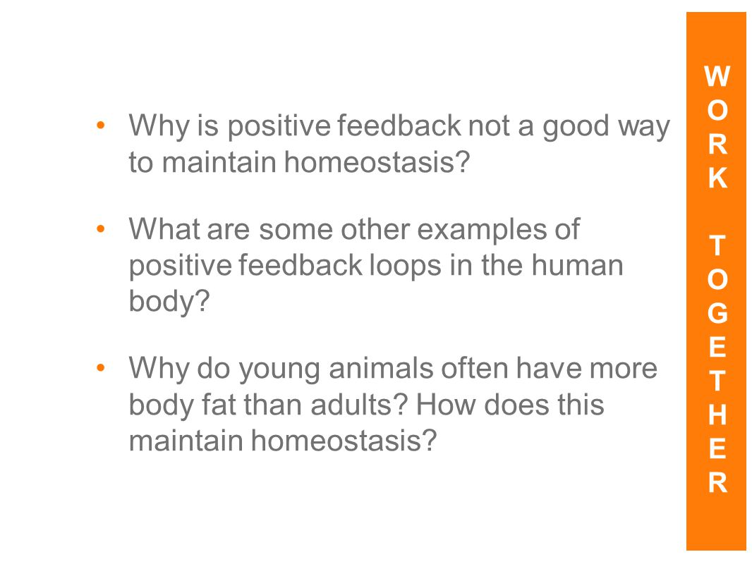 4 things cells do to maintain homeostasis - Why Is Positive Feedback Not A Good Way To Maintain Homeostasis