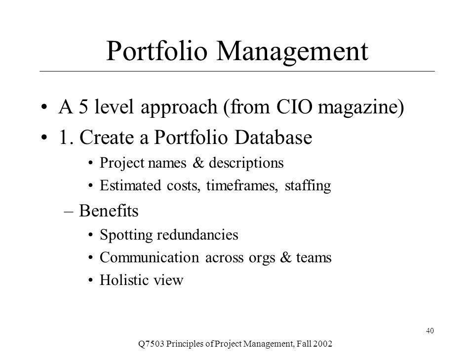 principles of portfolio management pdf