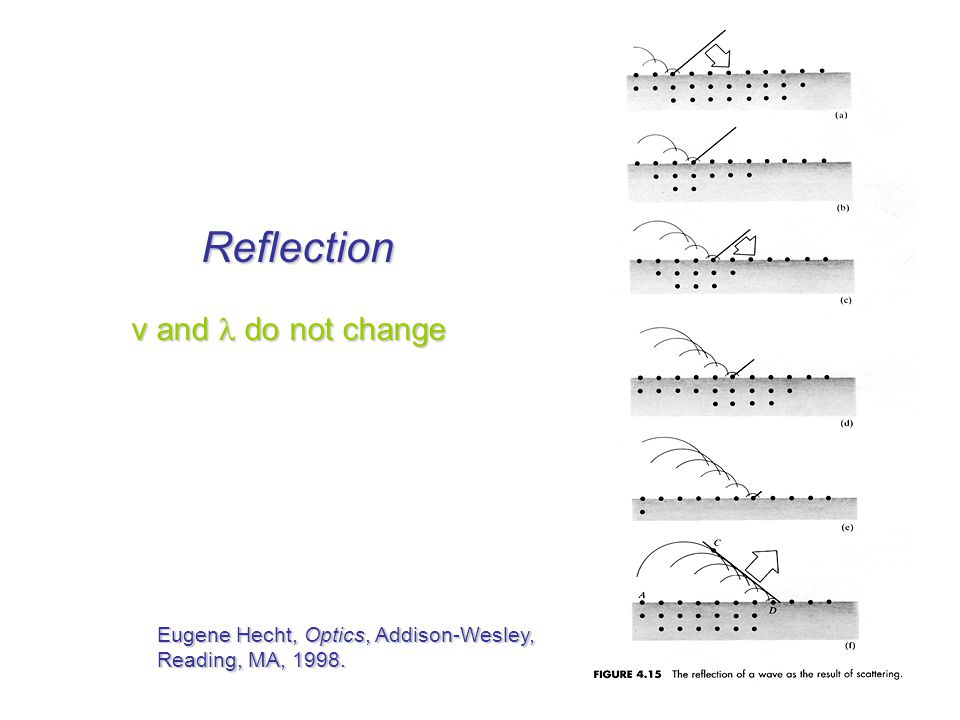 Reflection v and  do not change