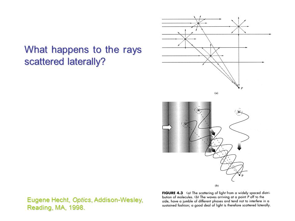 What happens to the rays scattered laterally