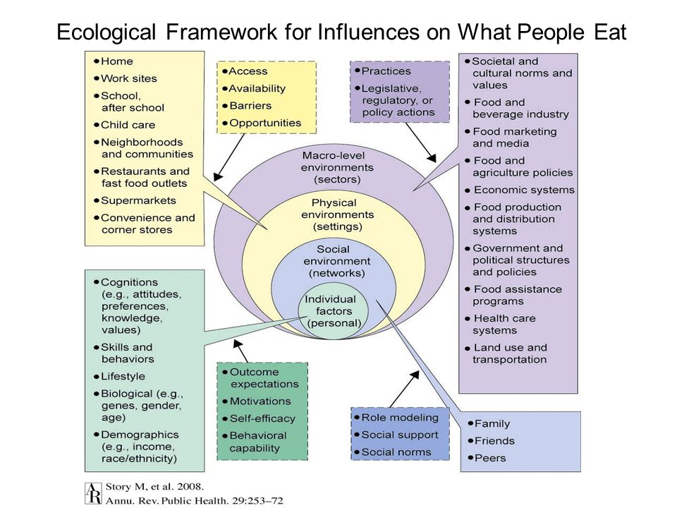 Ecological Framework for Influences on What People Eat