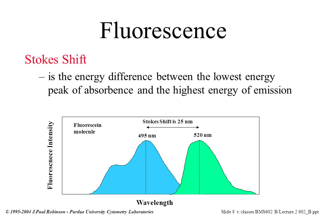Week 2 Excitation Fluorescence Optical Systems