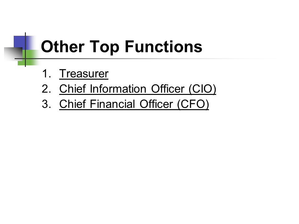 Other Top Functions Treasurer Chief Information Officer (CIO)
