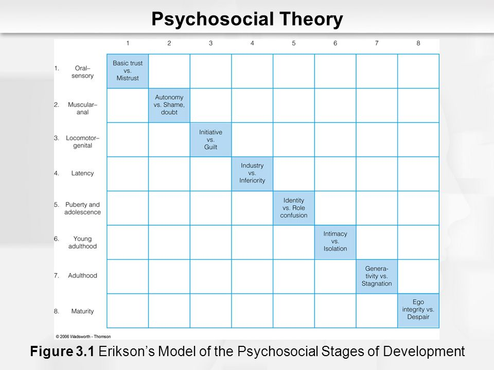 Psychosocial Theory Figure 3.1 Erikson's Model of the Psychosocial Stages of Development