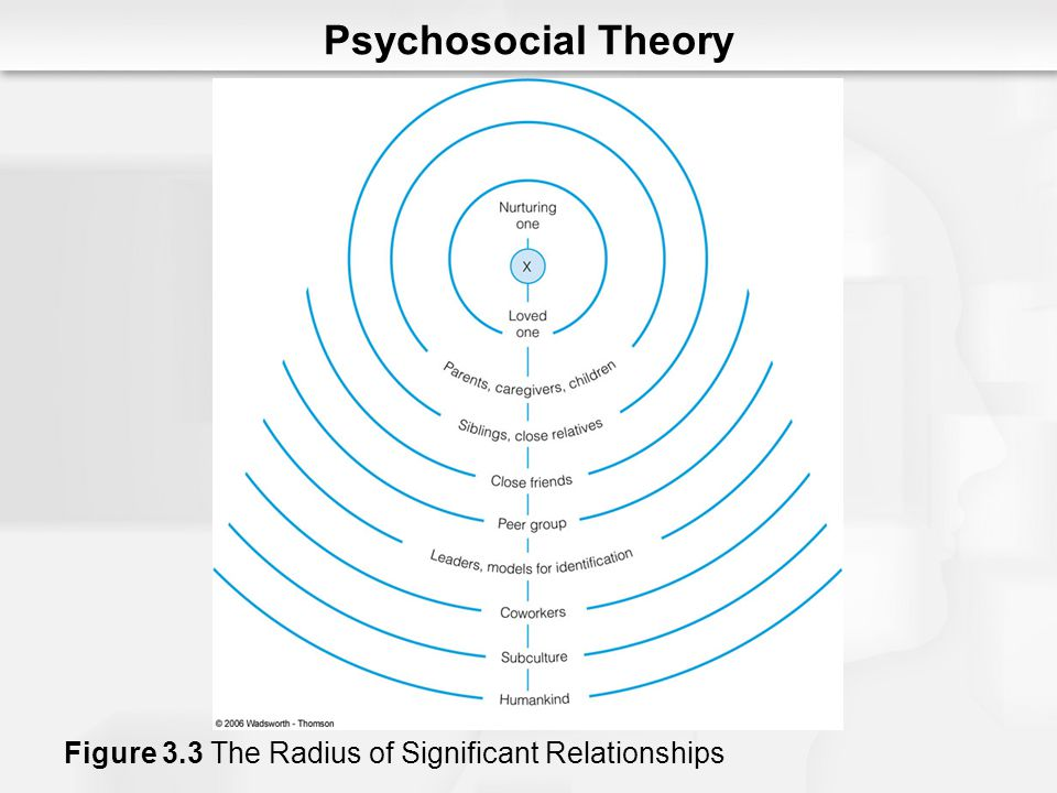 Psychosocial Theory Figure 3.3 The Radius of Significant Relationships