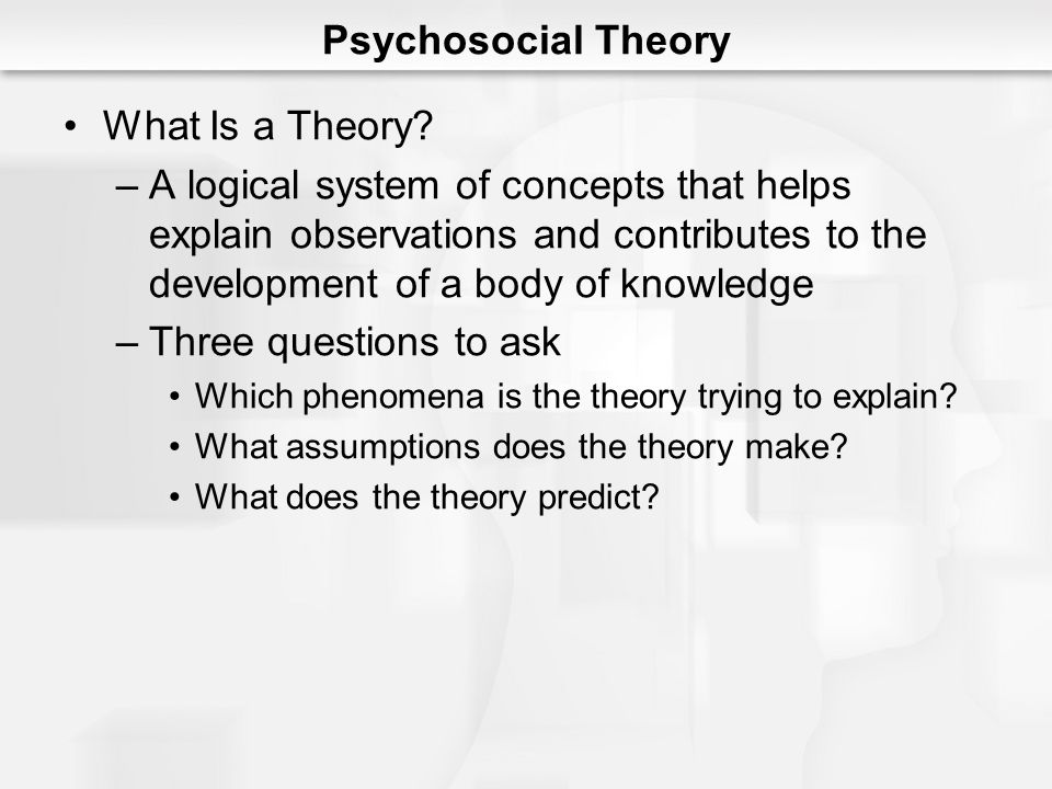 Psychosocial Theory What Is a Theory