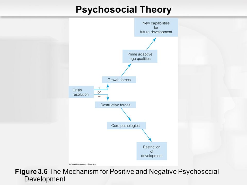 Psychosocial Theory Figure 3.6 The Mechanism for Positive and Negative Psychosocial Development