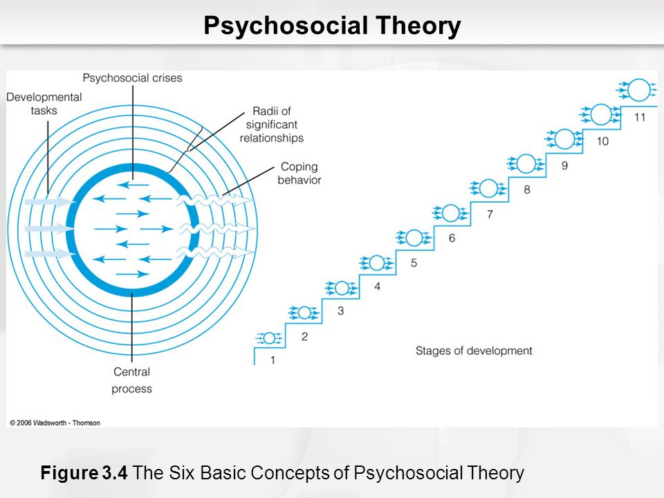Psychosocial Theory Figure 3.4 The Six Basic Concepts of Psychosocial Theory