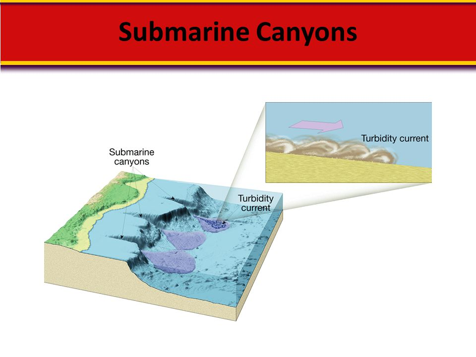 Submarine Canyons Makes no sense without caption in book