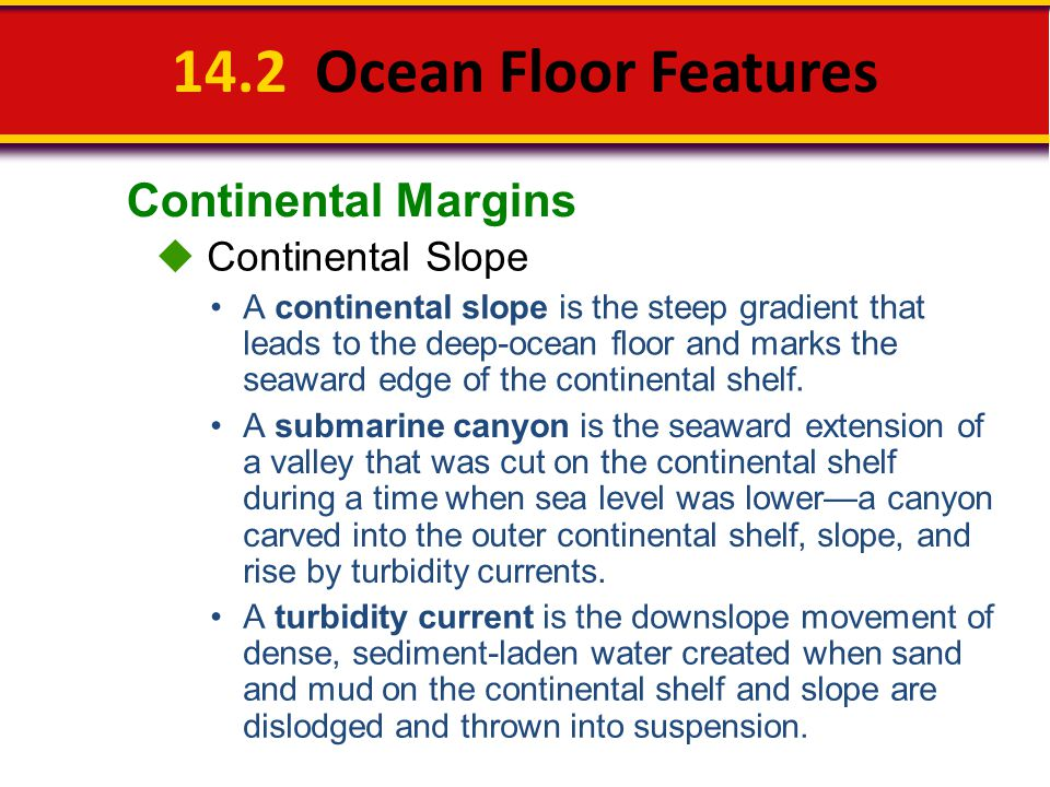 14.2 Ocean Floor Features Continental Margins  Continental Slope