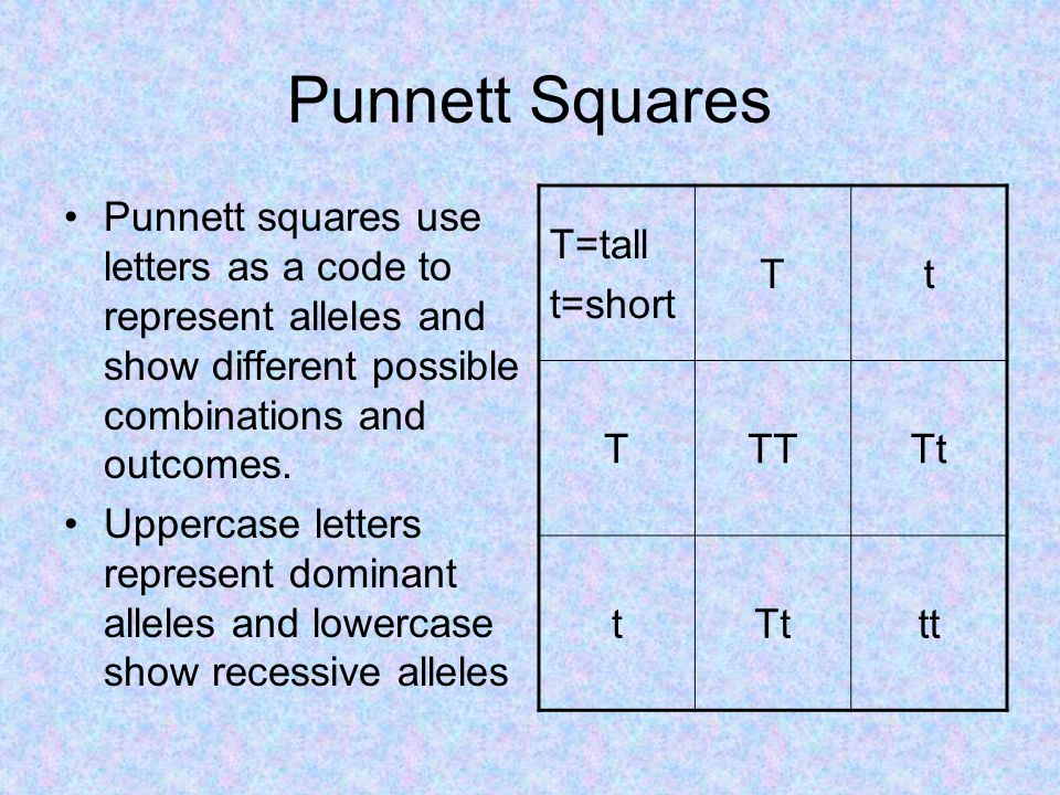 Punnett Squares Punnett squares use letters as a code to represent alleles and show different possible combinations and outcomes.
