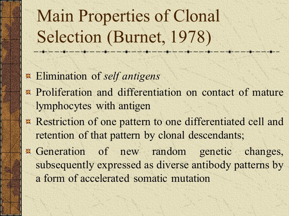 Main Properties of Clonal Selection (Burnet, 1978)