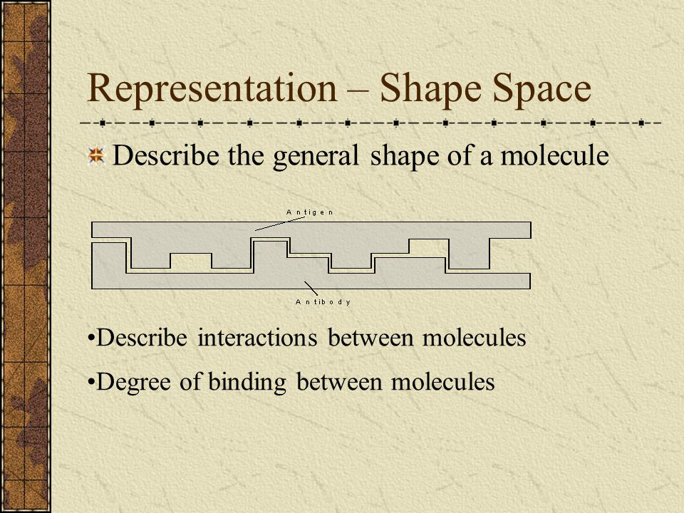 Representation – Shape Space
