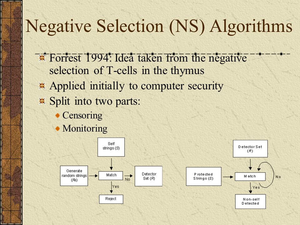 Negative Selection (NS) Algorithms