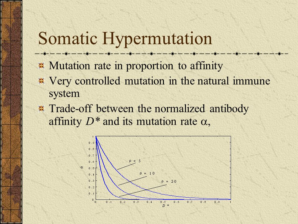 Somatic Hypermutation