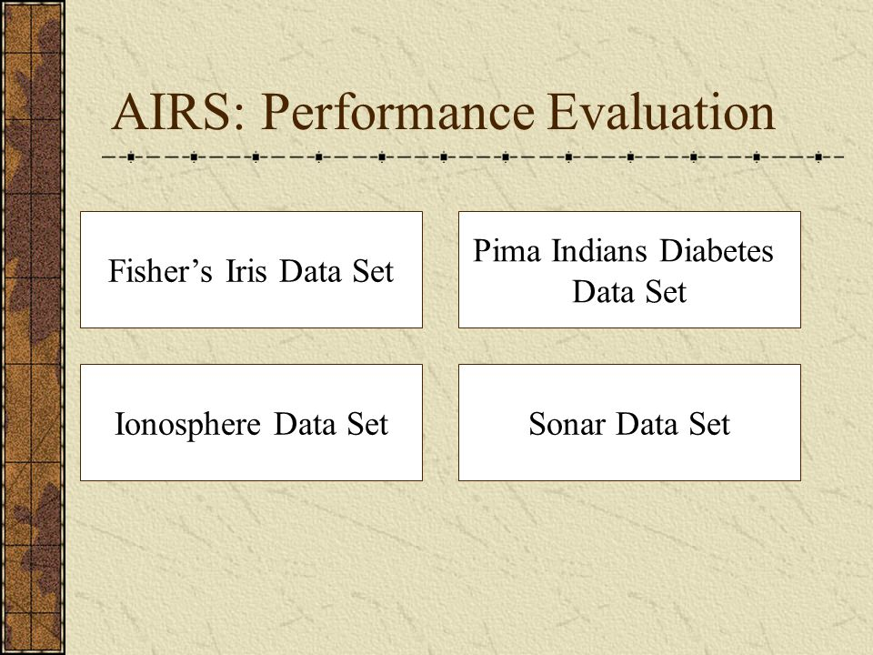 AIRS: Performance Evaluation
