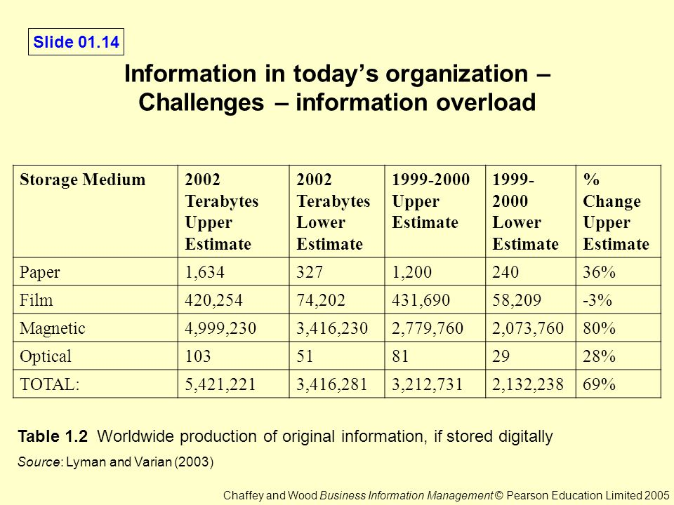 Managerial Issues Associated with Managing an Organization's Is Infrastructure Essay Sample